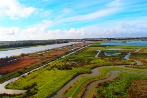 Oyster farms along the west coast